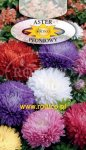 Aster peoniowy Mix ROLTICO e-rosa_pl